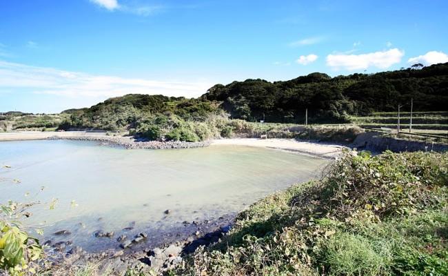 (調査中の砂浜1)