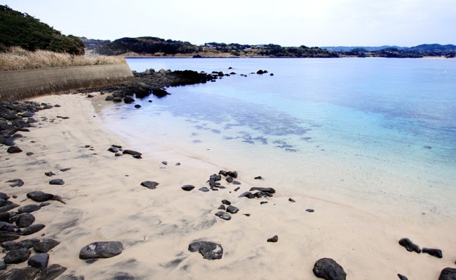 (調査中の砂浜6)