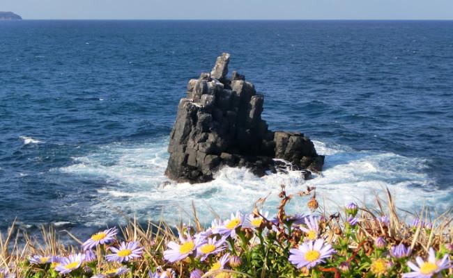 絶景「左京鼻(さきょうばな)」の岩がすごい!! …そして発覚した勘違いとは!?