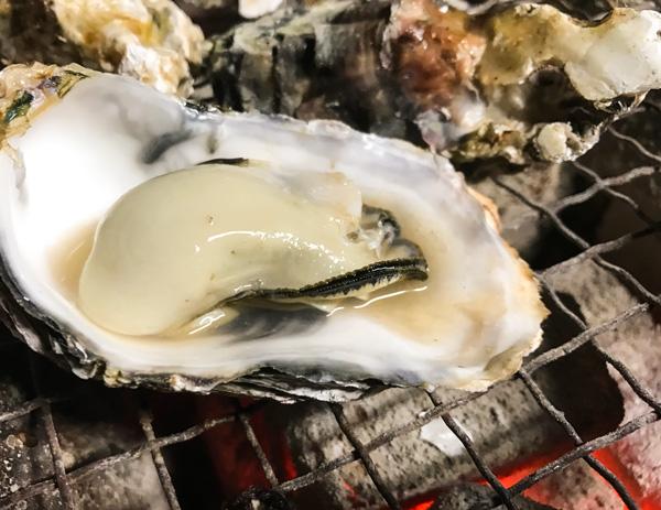 """内海湾の名物""""炭火焼き牡蠣"""""""
