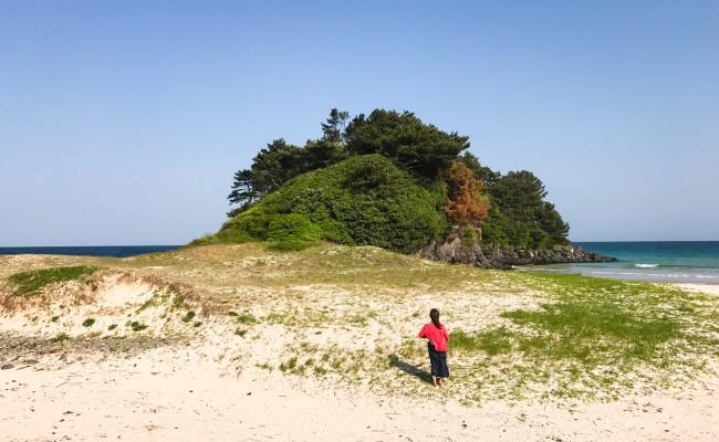古代文明はビーチでバーベキューしていたか?「大久保遺跡」で土器発見!